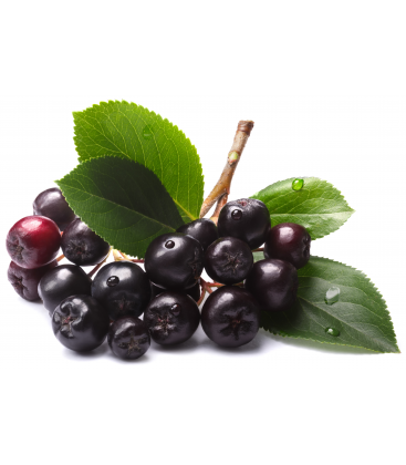 aronia berries, chokeberries, pure aroniaberry, pure chokeberry